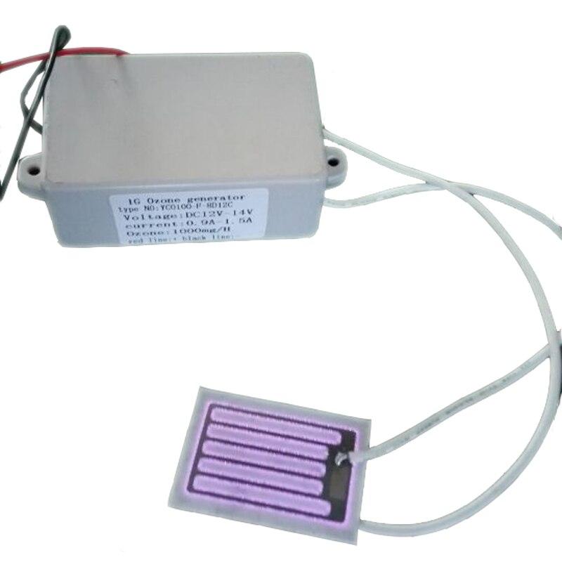 12v 24v 110v 220v Ozone Generator 1g h with Ceramic Plate 2pcs start Free Shipping
