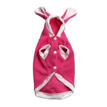 Cute Bunny Sphynx Cat hooded sweatshirt / costume