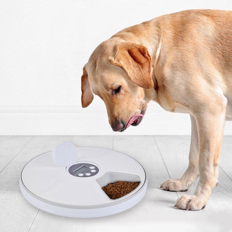Minuterie numérique Ronde Automatique mangeoire pour animal domestique 6 Repas Distributeur De Nourriture Pour Chiens Et Chats