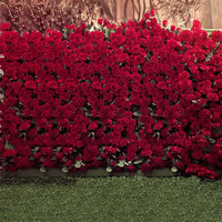 Digital Printed Red Roses Wall Wedding Photography Backdrops Spring Flowers Garden Party Photo Booth Background Green Lawn Floor
