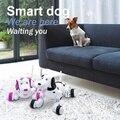 Электрические Развивающие Игрушки 2.4 Г Программируемый Беспроводной Пульт Дистанционного Управления Моделирование Интеллектуальная Собака Робот Собака Электронных Домашних Животных