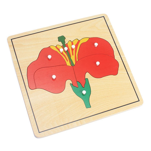 Baby Montessori Materials Wooden Puzzles Educational Toys Plant Growth Panel Wood Toy Learning Tangram/Jigsaw Toddlers Preschool 9