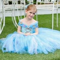 Princess Tutu Full Length Cinderella Dress Flower Girls Tutu Dress Princess Birthday Party Dress Costume Fancy