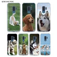 Transparent Soft Silicone Phone Case Cute Animal husky Poodle For Samsung Galaxy S9 S8 Plus S7 S6 S5 Edge Note 9 8