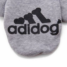 "Absolutely lovely ""Adidog"" (Adidas) sports Sphynx Cat outfit"