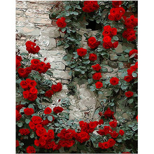 WONZOM DIY Painting By Numbers Kit,Red Rose, Oil On Canvas With Frame, Home Wall  Decor Picture, Acrylic Paint 40x50cm