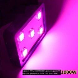 1 200 W LED rosną światła z COB (Chip na pokładzie) technologii  czerwony/niebieski 8:1