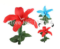 Quick Color Changing Flowers Magic Trick Glass Magic Props