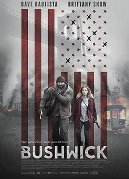 《布希维克》2017年美国动作,冒险电影在线观看