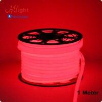 1 Meter 220V 5050smd 148leds M Flexible LED Strip Lights Water Proof IP65 Outdoor Project Plaza