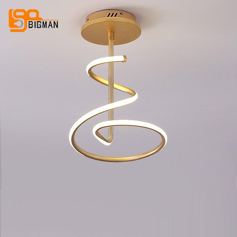 new arrival LED ceiling light modern flush LED lamp AC110V 220V gold plafonnier led home lighting