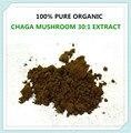 100% PURE ORGANIC SIBERIA CHAGA MUSHROOM INONOTUS OBLIQUUS 30:1 POLYOSE EXTRACT,250g(8.8 oz) Pure Antioxidant Superfood