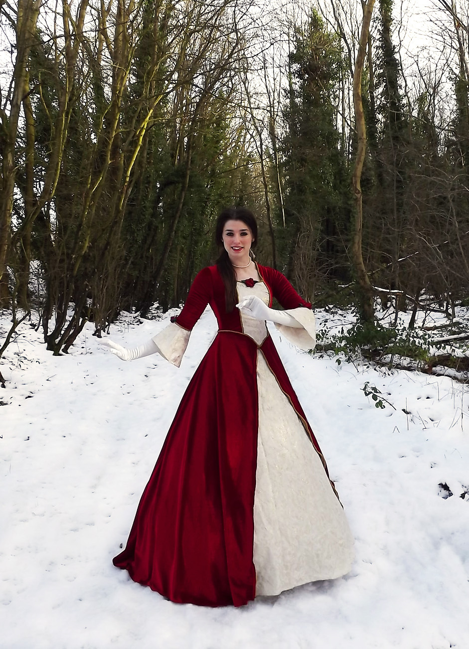 Custom made Beauty and the Beast Costume Belle Christmas Dress ...