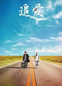 《追爱》2011年中国大陆,台湾喜剧,爱情电影在线观看