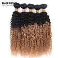 Brazilian Kinky Curly Virgin Hair 4pcs lot 1b/27 1b/99j 1b/4  ombre Curly Hair Bundles