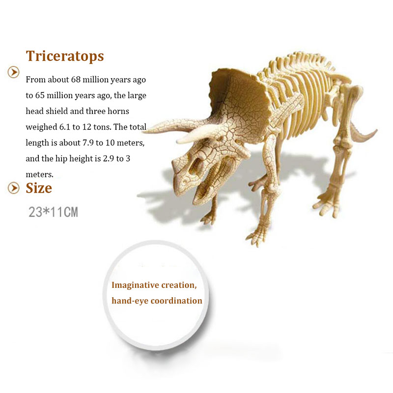 DIY Assembled Simulation Dinosaur Skeleton Model Fossil Archaeological Excavation Set Educational Puzzle Toys for Children