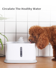 Dog automatic feeder Cat Water Dispenser Automatic Circulation Feeding Flowing Fountain Pet Drinker Bowl Drinking