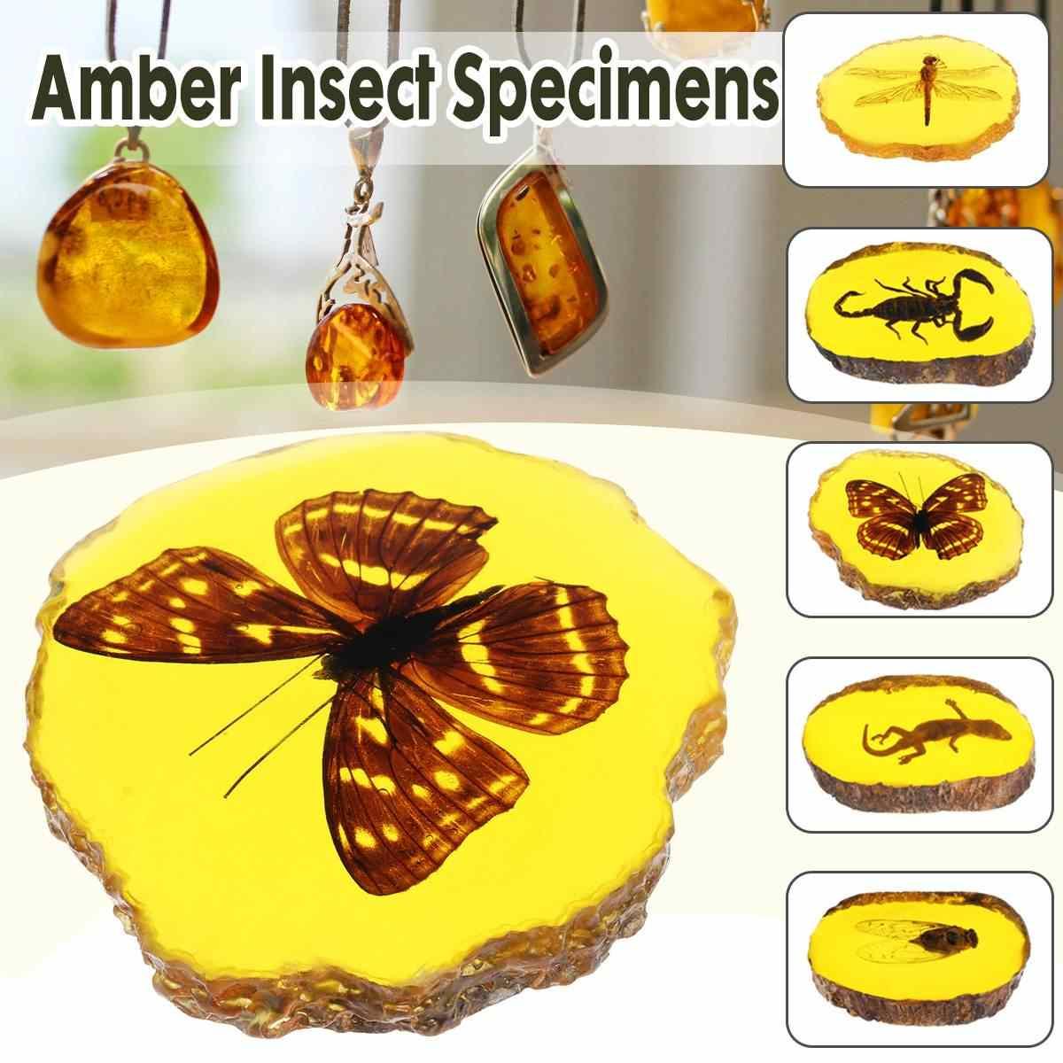 天然琥珀トンボサソリ蝶ヤモリ昆虫マニュアル研磨装飾 Diy の装飾工芸ギフトホーム