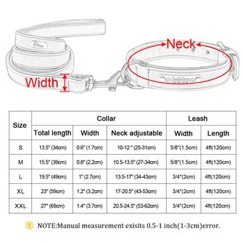 Dog Collar Leash Lead 6