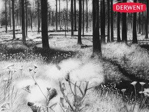 Image 3 - Derwent Soluble Charcoal Pencil  Light / Medium/ Dark  12Pcs/lot Professional Sketch drafting Drawing