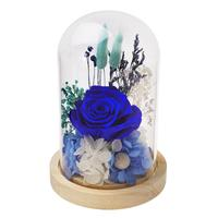 Preserved Flowers Immortal Rose Flower In Glass Dome with Fallen Petals on Wooden Base for Home Wedding Valentine Mother's Day