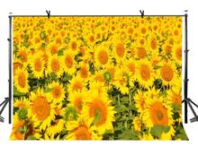 7x5ft Sunflower Backdrop Large Beautiful Photography Background and Studio Props