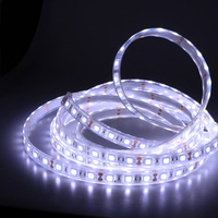 SMD5050 LED Strip Light IP67 Waterproof Ribbon Tape Strip Light 5M/Roll Flexible Strip Light DC12V For Indoor/Outdoor