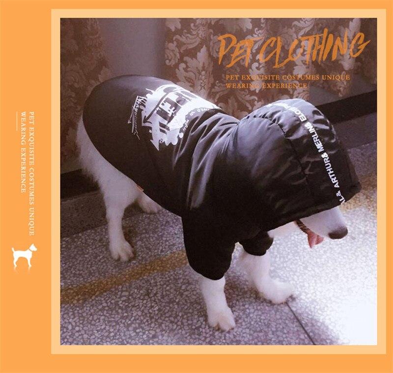 Labrador large dog clothes winter (14)