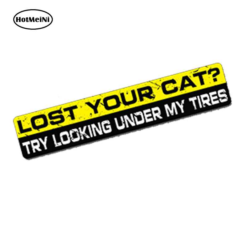 LOST YOUR CAT