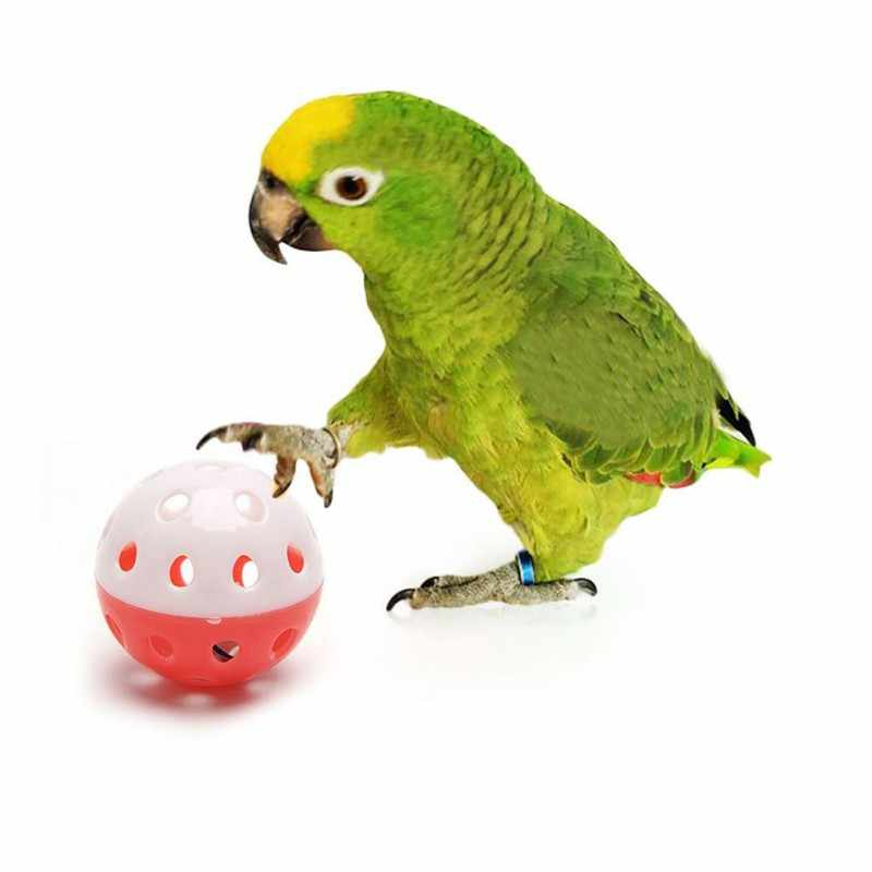 1 pc 재미 있은 앵무새 장난감 앵무새를위한 종을 가진 빈 공 cockatiel 새 씹는 소리 장난감 새 장난감 부속품 무작위 색깔