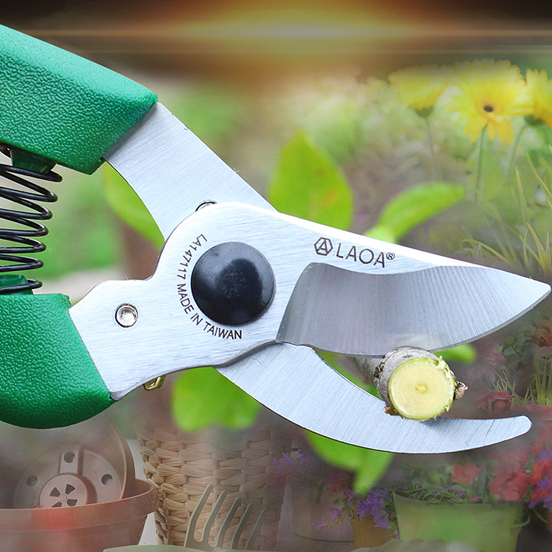 Ciseaux d'élagage LAOA SK5 sécateur outils de cueillette de fruits pointus coupe-branches d'arbre cisailles à fleurs greffage sécateur outil de jardinage
