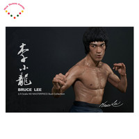5d Diy Diamant Malerei Kit Quadratmeter Diamant Strass Kit Diamant Stickerei Liebhaber International Kung Fu Star