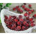 10pcs 15*20mm Artificial  Berries Flower Red Cherry Stamen Pearlized Wedding Artificial Flower Party Fruit Decoration 7zza080-3