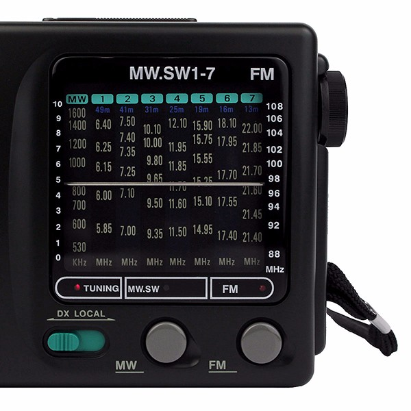 TECSUN R-909 FM AM SW World (9)