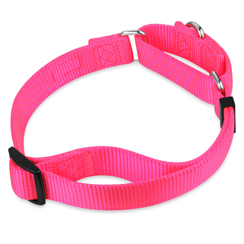 Nylon Martingale Training Collar Adjustable Pet Dog Collar For Large Medium And Small Dogs Supplies Seven Colors S/M/L HY139