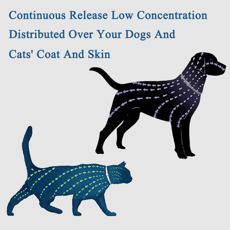 Pet Dog Cat Adjustable Anti parasites Collars Mite Protection Fleas Ticks Lices Forceps Mosquitos Control Reject Pet Gift in Dog Accessories from Home Garden