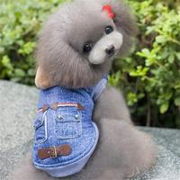Autumn Winter Thickening Cashmere 2 Legs Pet Dog Jackets Leather Buckle Casual Dog Coats Teddy Dog