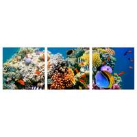 3 Panels Hot Sell Modern Wall Painting Ocean Underwater World Home Decorative Children Room Art Picture