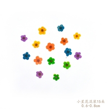 Small star flowers diy  dried florizone glue natural branches free shipping