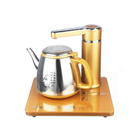 Electric Kettle 220V Automatic Water Feeding Electric Tea Service Stainless Steel Electric Water Boiler A08