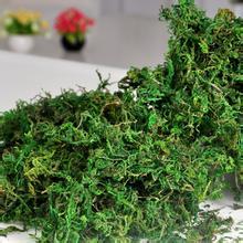 100g Natural Christmas Home Office Furniture Decor Dried Bonsai Foliage Floral Garland Artificial Plant Grass Moss Green