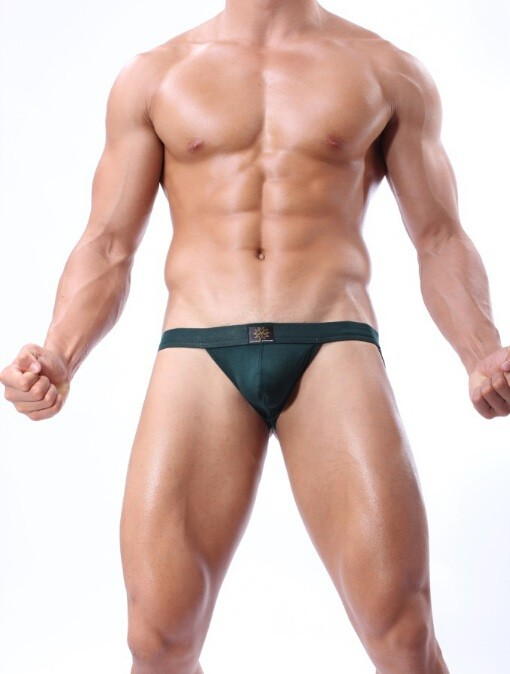 Brave Person Mens Thongs And G Strings Gay Underwear Cueca Bikini Sexy Erotic Homens Brief Jockstrap Men