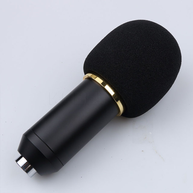 Sound Recording Microphone
