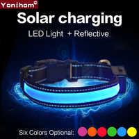 Dog Collar Nylon Solar USB Rechargeable LED Collar Light Night Safety Glow Flashing Dog Collar LED Rechargeable LED Dog Light