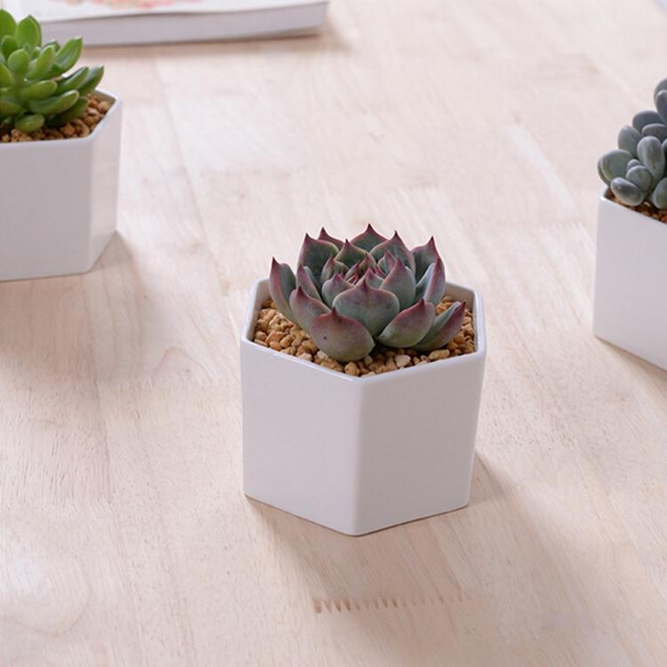 45a480d634 New Small hexagonal white ceramic flower pot desktop decor potted flower  pots planters for succulent zakka pottery bonsai pot-in Flower Pots &  Planters from ...