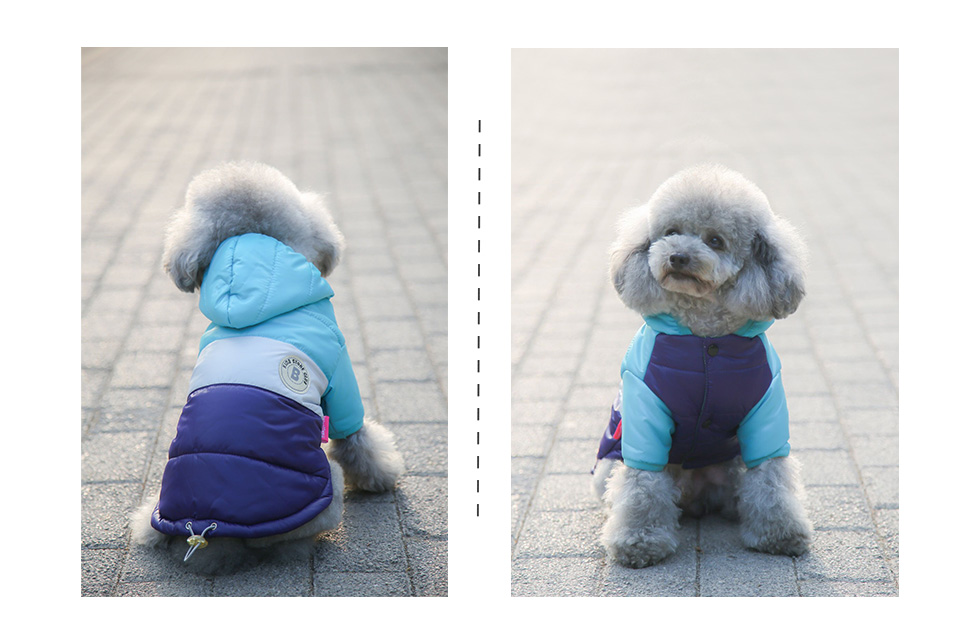 Winter Pet Dog Clothes Waterproof Warm designer Jacket Coat S -XXL Sport Style Puppy Hoodies Hat for Small Medium PETASIA 306