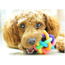Popular Dog Toys | Rainbow Color Chew Toys