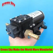 160PSI 60V DC 100W fog/spray/misting,spraying pesticide,farm,greenhouse,garden irrigation use  electric diaphragm pump