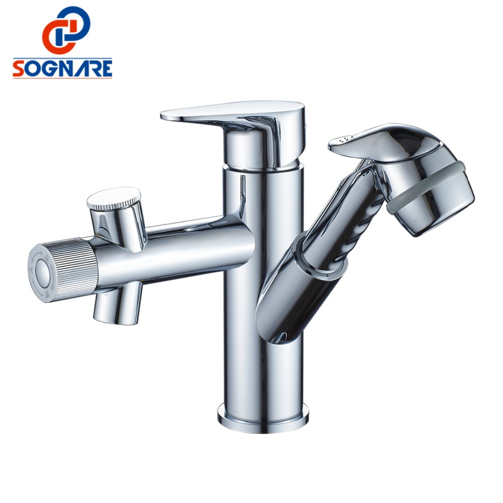 SOGNARE Pull Out Basin Faucet Brass Chrome Washing Face and Hair Bathtub Faucet Mixer Tap Single Handle Bathroom Sink Faucet pastoralism and agriculture pennar basin india