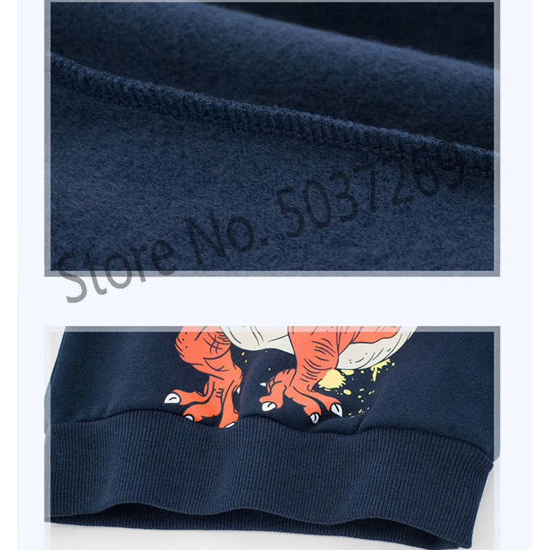 BINIDUCKLING Spring Autumn Baby Boys Hoodies O Neck Long Sleeve Fleece Lining Cartoon Dinosaur Print Casual Kids Child Tops in Hoodies Sweatshirts from Mother Kids